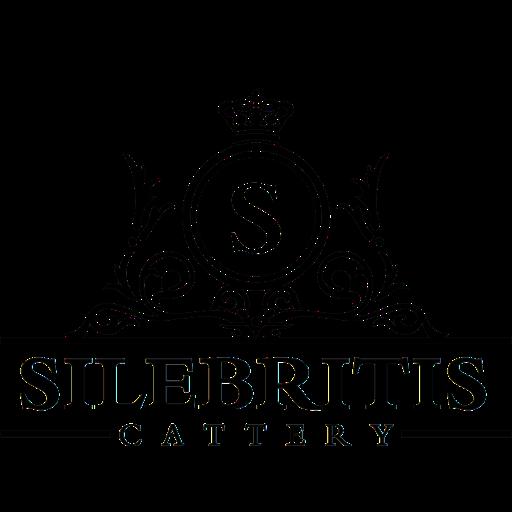 Silebritis Logo BW-512